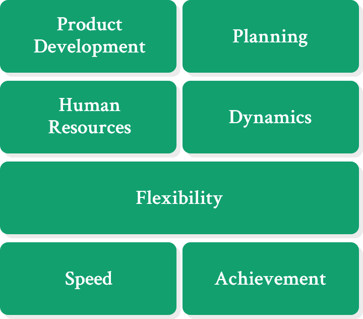 Product Development Planning Human Resources Dynamics Flexibility Speed Achievement